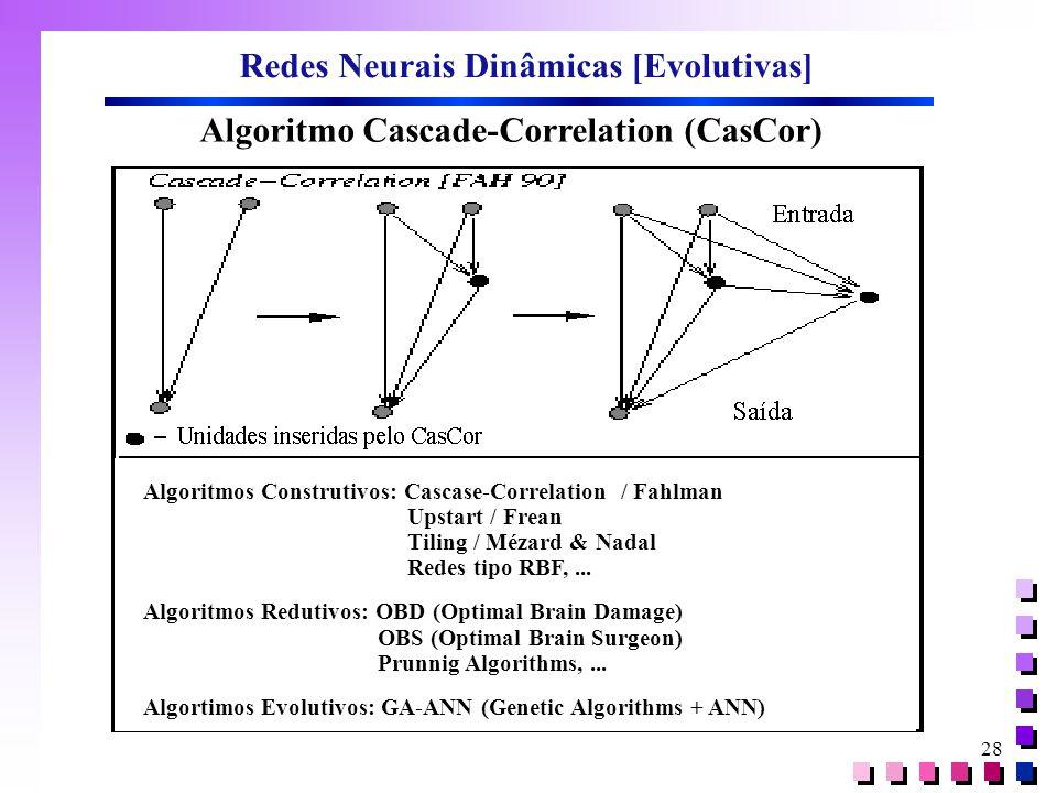 Redes Neurais Dinâmicas [Evolutivas]
